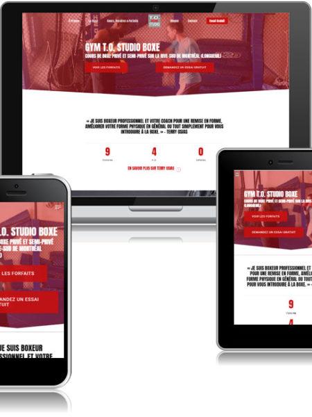 conception Site web terry osias